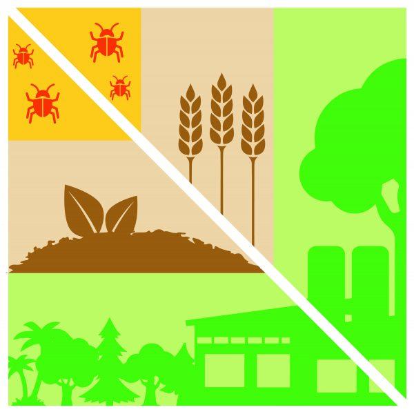 norme e metodi per il green pest management nelle filiere alimentari sostenibili